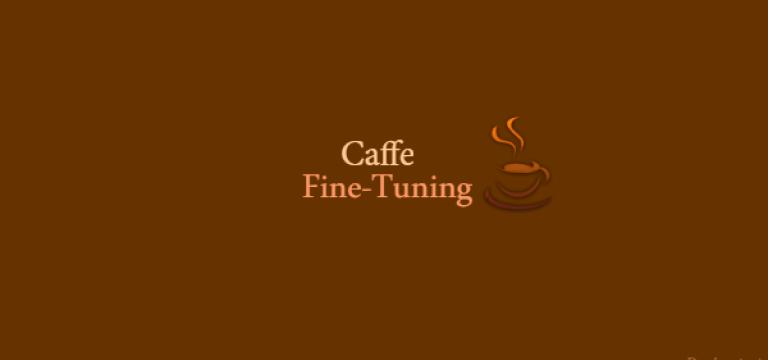 آموزش Caffe بخش چهارم : fine-tuning